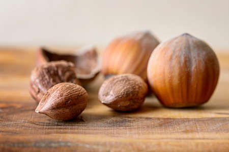 nutshell: hazelnut and nutshell on wood
