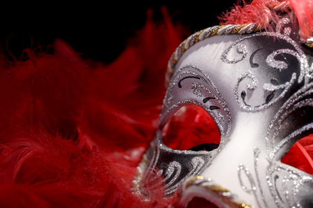 midst: Venetian mask carnival in the midst of red feathers