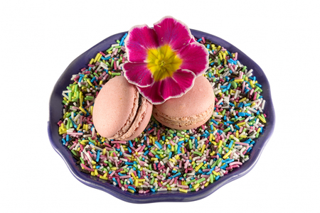 cowslip: two pink macarons and pink cowslip on multicolored sprinkles on white background