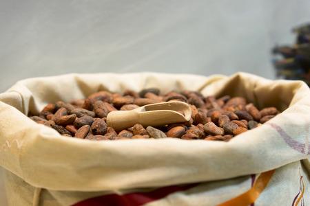 sacco juta: mucchio di semi di cacao nel sacco di juta