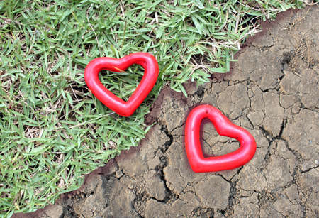 differentiation: two red heart on the grass and arid land