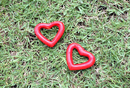 in differentiation: two red heart on the grass Stock Photo