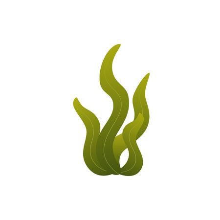 underwater seaweed in flat style 向量圖像