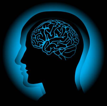 目に見える脳と人間の頭のプロファイル。ベクトル