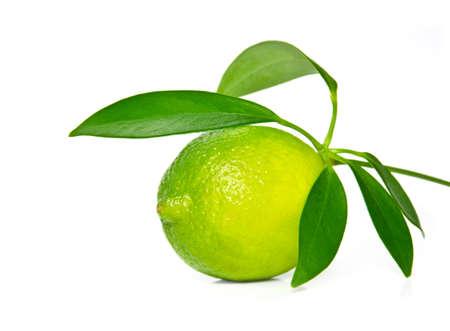 Fresh lime on white background.