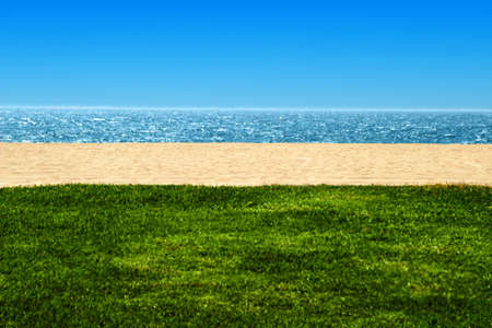 quadrant: view of beach and ocean with sand and grass