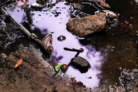 water in puddle reflecting purple sky photo