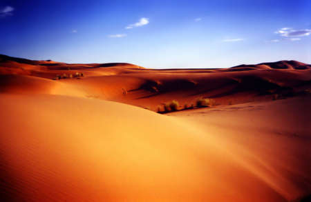view of an african desert with blue sky