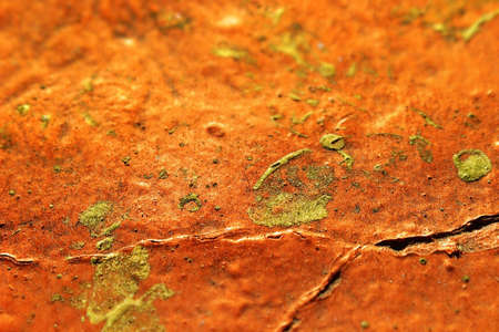 daubs: Shallow depth of field detail of yellow and rust colored paint daubs Stock Photo