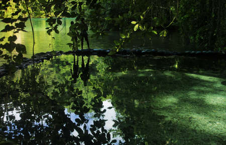 silhoutted: Silhoutted couple in beautiful jungle paradise setting with clear emerald water