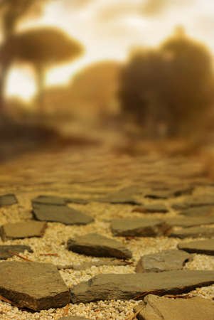 road block: Ancient cobblestone road with shallow depth of field