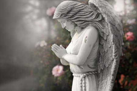 ali angelo: Vecchia statua di Angelo che prega in giardino lunatico