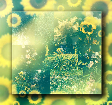 Conceptual composite background representing nature in summertime with cool retro vintage toning Foto de archivo