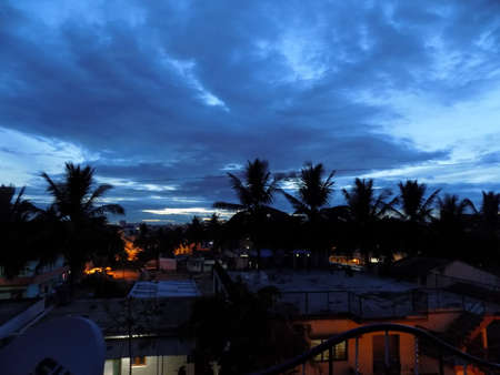 Evening Sky and Town Lighting against Palm Trees