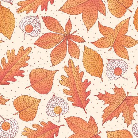 Modèle sans couture automne Vector avec feuilles de chêne, peuplier, hêtre, érable, tremble et marronnier d'Inde et physalis de couleur orange sur le fond en pointillé beige. Ornement d'automne avec feuillage détaillé. Vecteurs