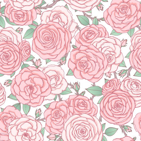 Vector seamless pattern with pink rose flowers and leaves on white background. Vintage floral ornament of blossoms in sketch style. Spring theme. For fabric, wrapping paper. 矢量图像