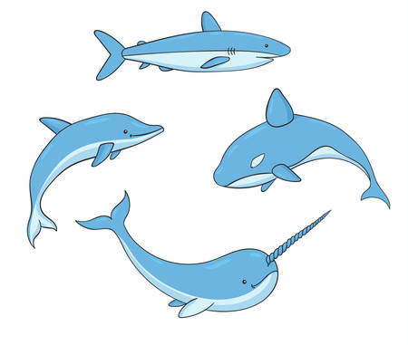 Set of vector underwater life with killer whale, shark, narwhal and dolphin. Sea creatures isolated on the white background. 矢量图像
