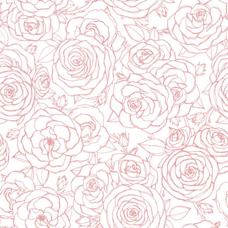Vector seamless pattern with pink rose flowers and leaves outline on white background. Vintage floral ornament of blossoms in sketch style. Spring theme. For fabric, wrapping paper. 矢量图像