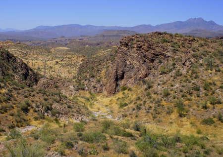 Desert Landscape Imagens