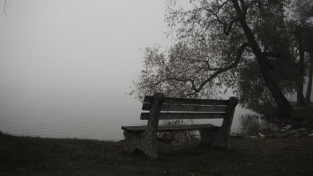 lonely seat by the waters edge on a lake covered in a heavy fog