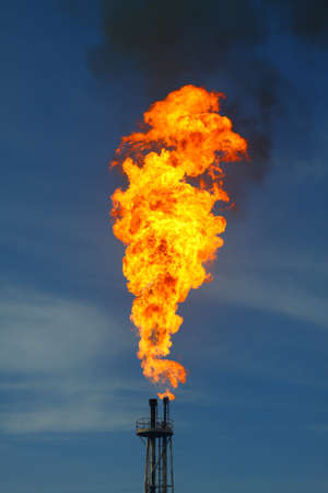 Burned flare