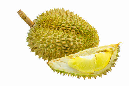 Durian fruit isolated on white background, Fresh fruit from orchard, King of fruit from Thailand, Many people like this fruit but some people din't like because so smell.