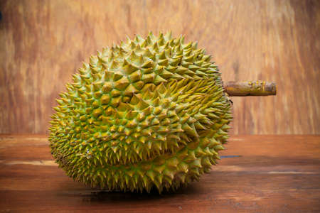 dint: Yellow durian on wood table, Fresh fruit from orchard, King of fruit from Thailand, Many people like this fruit but some people dint like because so smell.