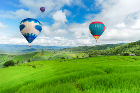 beautiful location: Balloon flying on rice field, Rice field in mountain or rice terrace in the nature, Relax day in beautiful location. Stock Photo
