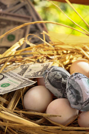 genesis: dollar Banknote in nest eggs, Growing of business and genesis Business, New business starting by banknotes, Business concept.