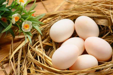 eieren in het nest van de aard, Verse eieren voor het koken of grondstof, verse eieren achtergrond. Stockfoto