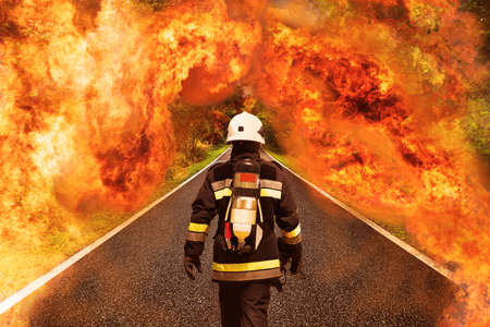 fire team: Fire fighter go to the forest for fighting with fire, Team work and operation with fire case and the mission should be successful, Fire fighter with suit and equipment for operation in fire case. Stock Photo