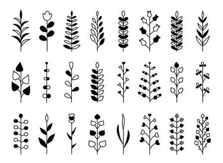 Branch black glyph set. Flourish retro ornament divider. Herbal ornate doodle design elements. Vintage botanical border. Wedding invitation, greeting card, scrapbook stamp, winner wreath floral decor
