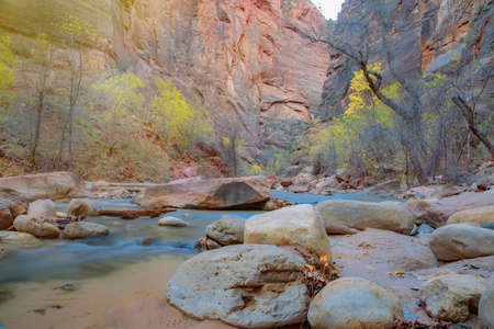 Narrows in Zion National Park, Utah, United States