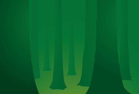 reforestaci�n: Pac�ficos bosque fondo verde y los �rboles