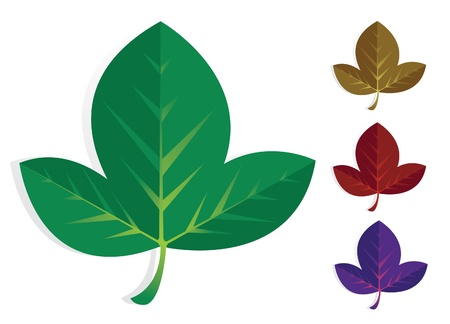 Fig leaf set Stock Vector - 19177530