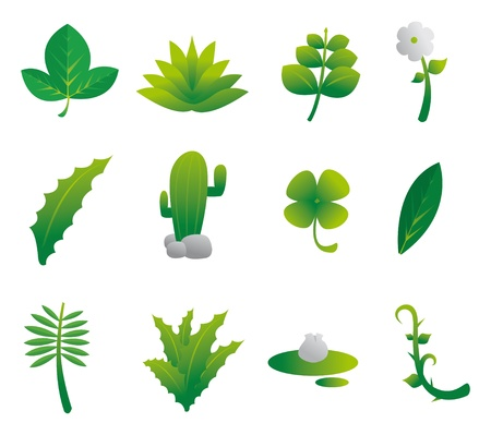 Plants Nature Set Stock Vector - 19177527