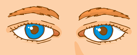 human eye close up: Cartoon illustration of human look or blue eyes close up