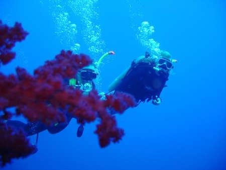 divers Stock Photo - 603590