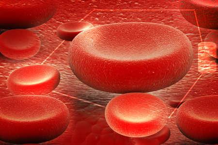 red blood cell: gl�bulos rojos que fluye en las arterias