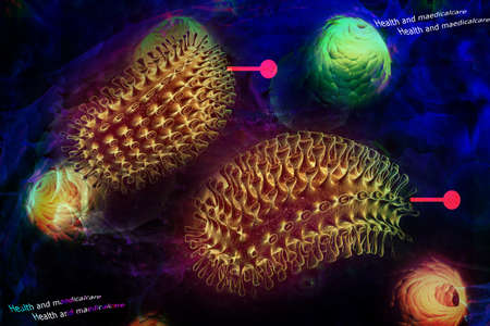hydrophobia: Digital illustration of rabies virus in colour background