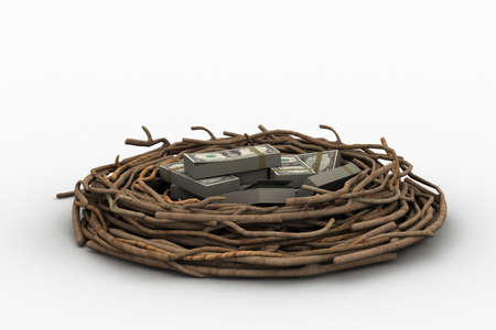 global retirement: Currency note in bird nest