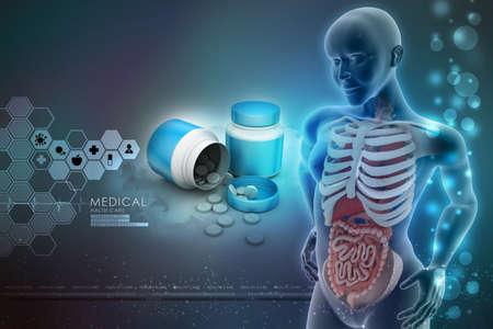 urogenital membrane: human anatomy  with medicine bottle
