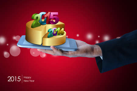 the turn of the year: successful business bar and pie graphs 2015