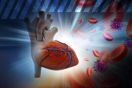 piastrine: Cuore umano con piastrine e virus in colore di sfondo