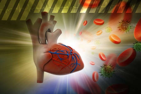 platelets: Human heart with platelets and virus in color background Stock Photo