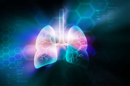 pulmones: Human lungs in color background