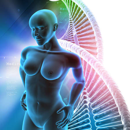 midsagittal: Human female anatomy with DNA in color background Stock Photo