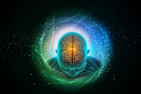 vertegenwoordiging van de menselijke hersenen