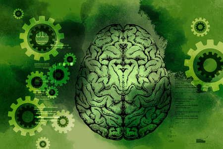 presentation of human brain Stock Photo