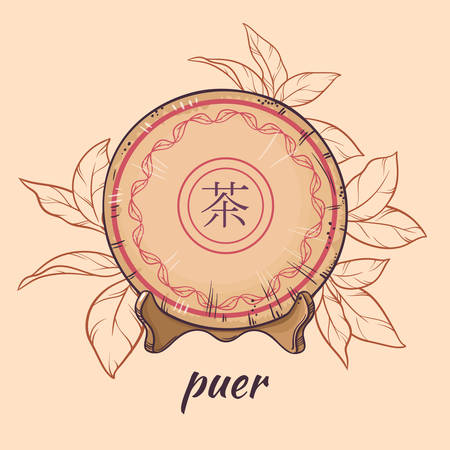 illustration with chinese tea puer on color background